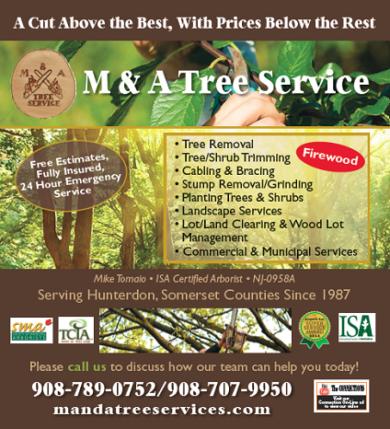 M&A Tree Service