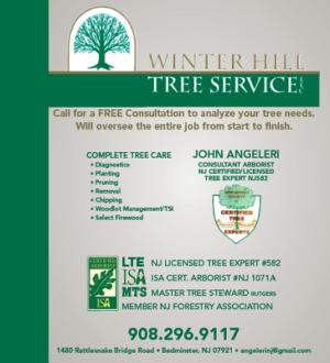 Winter Hill Tree Service