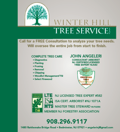 Winter Hill Tree Service