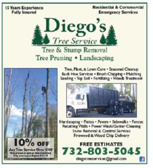 Diego Tree Service