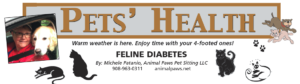 Feline Diabetes